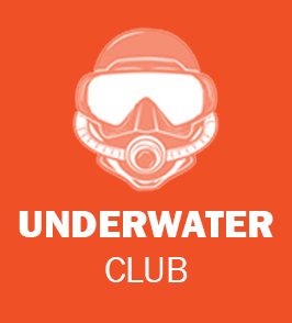 Massey University Albany Underwater Club